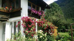 Ferienwohnung, Apartment, Bichlbach, Tirol, Zugspitzarena